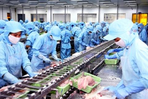 Quy hoạch tổng thể phát triển ngành Thủy sản tỉnh Quảng Bình đến năm 2020